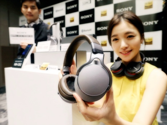 1710 Bluetooth Headphones