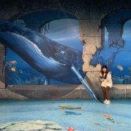 2004 Jisoo - 3D Museum(5)